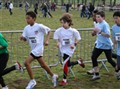 Idf de Cross (1)