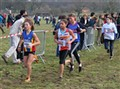 Idf de Cross (3)