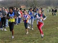Idf de Cross (6)