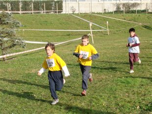 Chpts 95 de Cross Country (Maj)